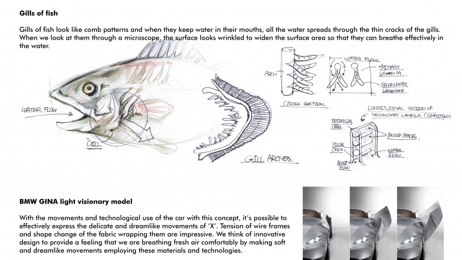 sketch19-940x530