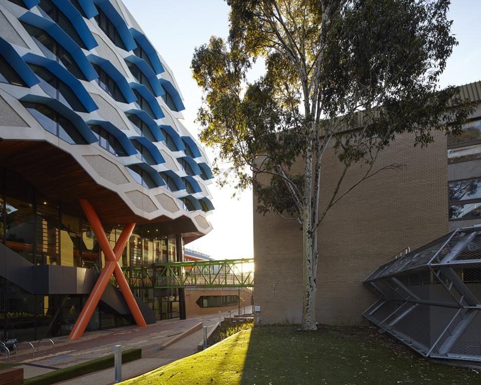 LIMS_La Trobe Institute for Molecular Science_La Trobe University_Lyons_Architects_Melbourne_Australia_Architecture_Architectural Photography_Architectural Photographer_Nils Koenning_06