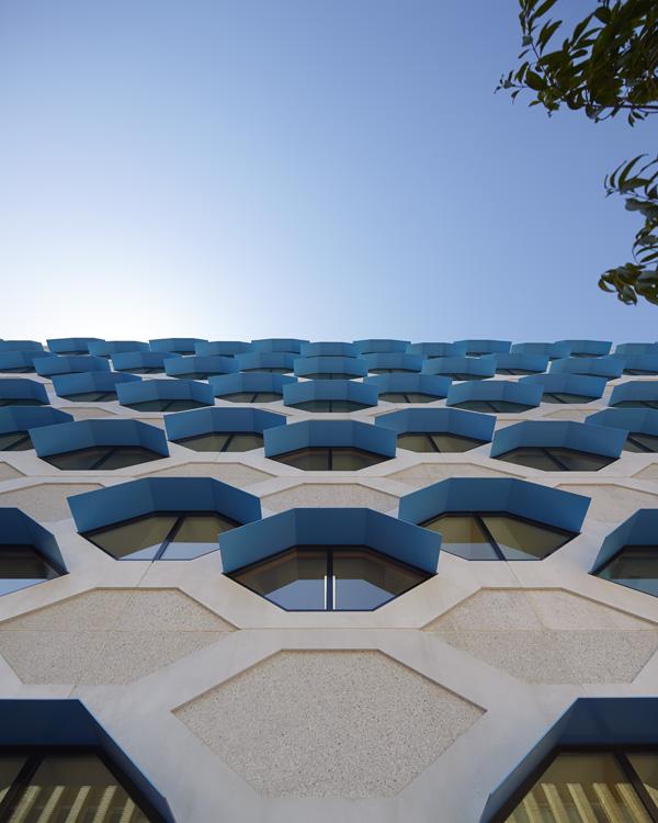 LIMS_La Trobe Institute for Molecular Science_La Trobe University_Lyons_Architects_Melbourne_Australia_Architecture_Architectural Photography_Architectural Photographer_Nils Koenning_11