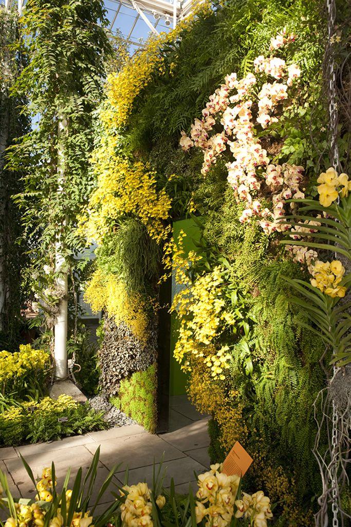 fuggoleges kertek novenyfalak 24