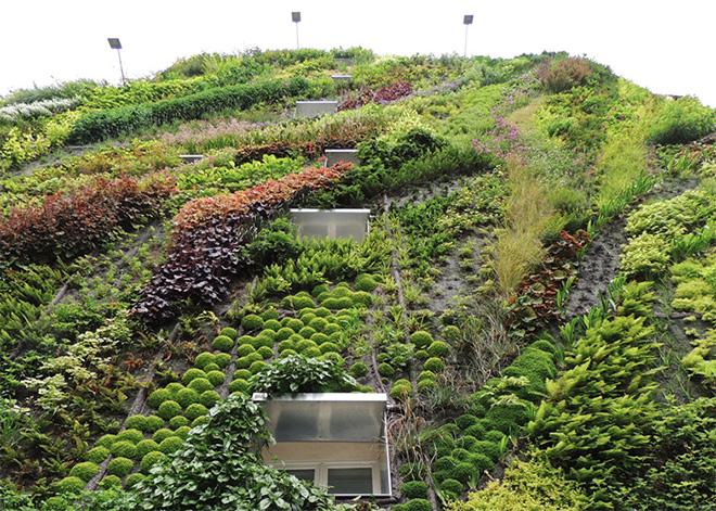 fuggoleges kertek novenyfalak 4