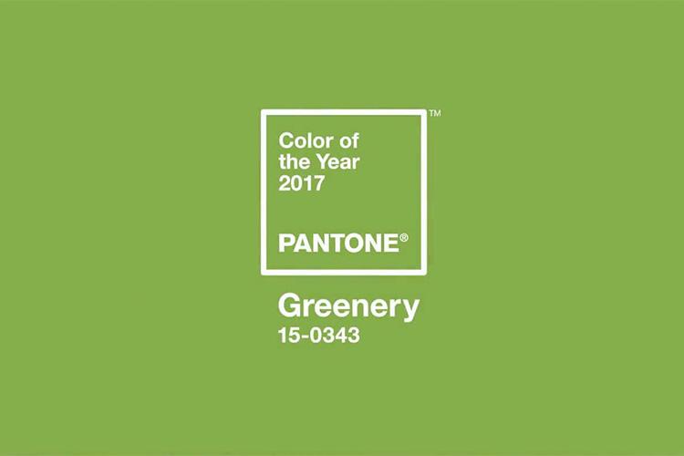 ev-szine-2017-greenery-18