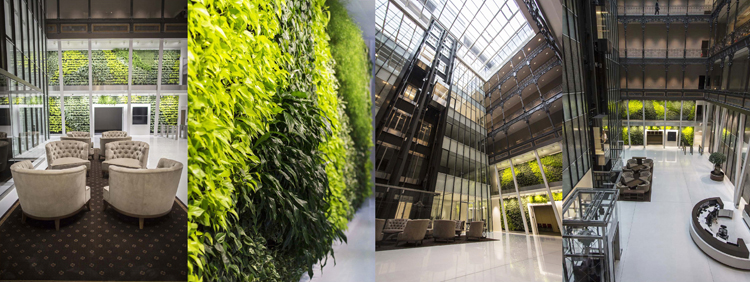 ev-szine-2017-greenery-7