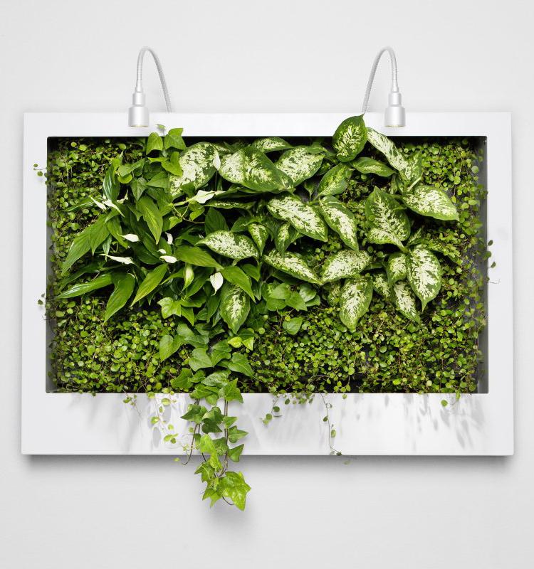 ev-szine-2017-greenery-8